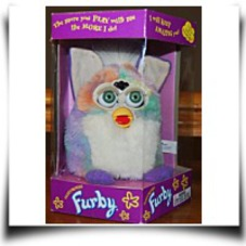 On Sale1999 Lavender White Tummy And Mane