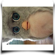 Furby 8 Plush Toy